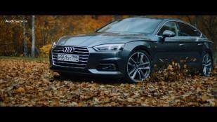 "Audi Service ""Autumn"""