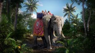 IVI. Elephant