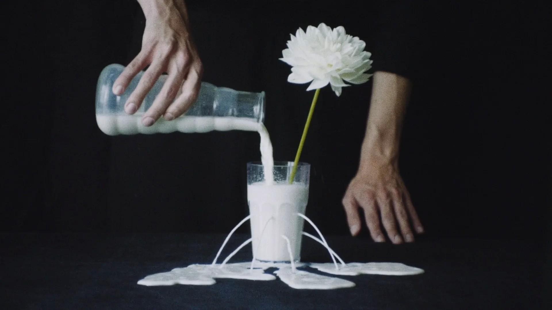 Реклама сети салонов цветов ЦВЕТОЧКА