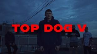 Top dog V